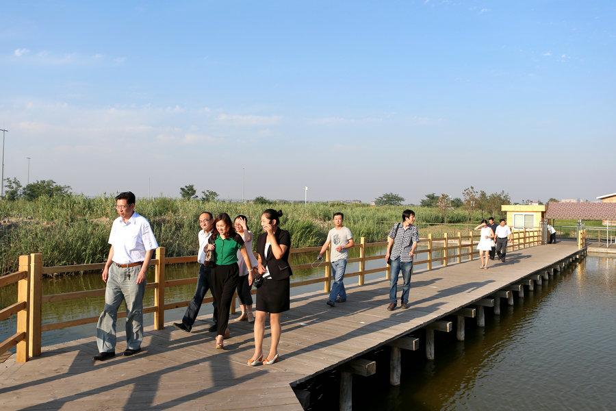 记者走进曹妃甸湿地公园