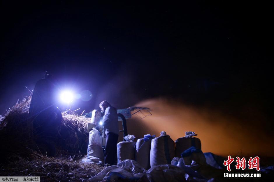 为躲避空袭 叙利亚农民深夜收割小麦