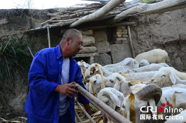 【网络媒体走转改】精准扶贫助农民脱困王海和他的奔小康之路