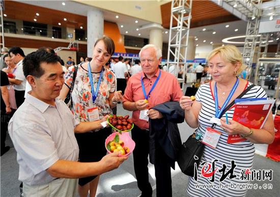 国内外企业展销会举行 50余家企业对接交流
