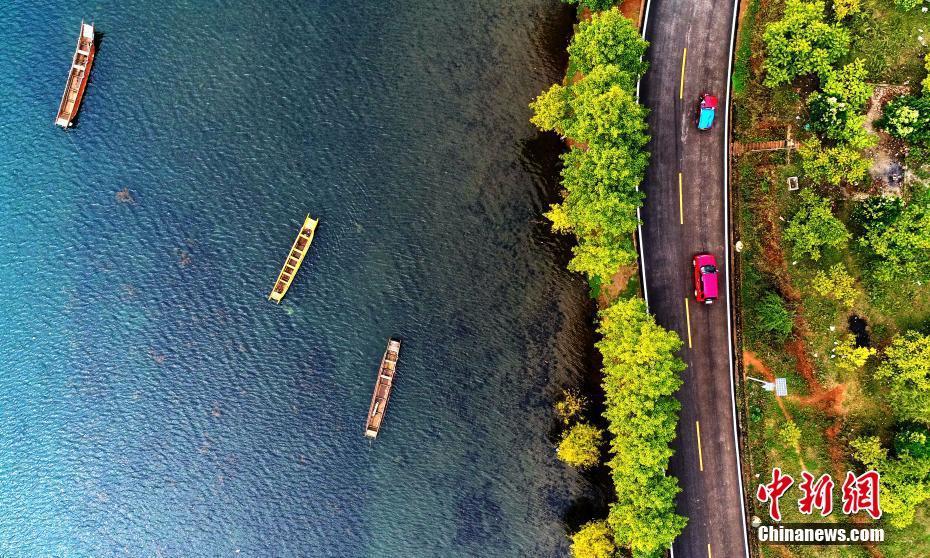 泸沽湖秋色迷人