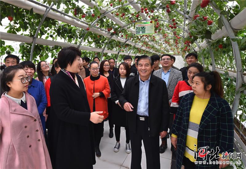 塔元庄村:人均收入四年翻了一番多