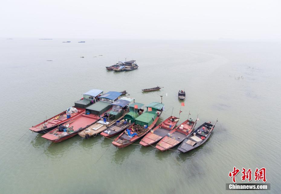 上游来水增多 中国最大淡水湖鄱阳湖水面增加