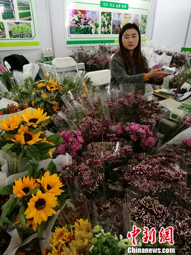 """中国鲜花市场""""消费升级"""" """"云花""""步入转型新阶段"""