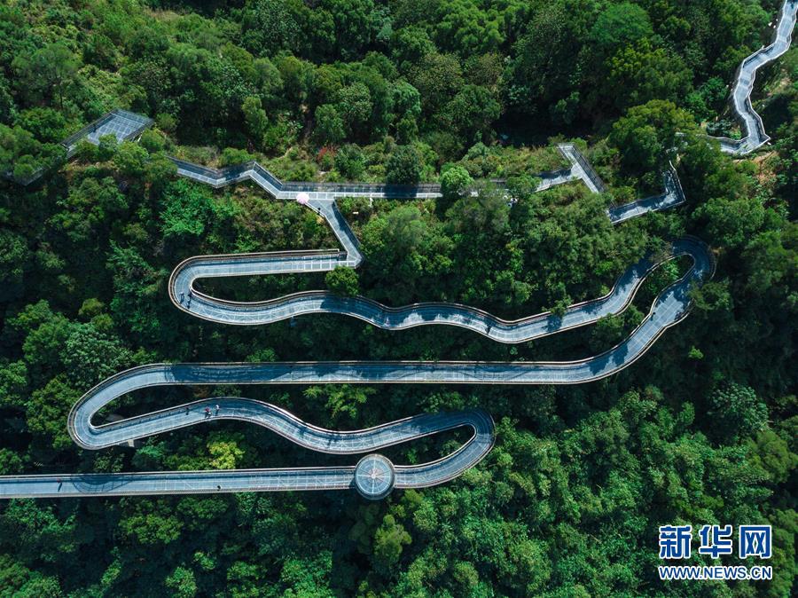福州:空中绿道 城市幽境