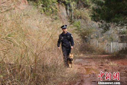 """铁路民警与猎犬成亲密""""战友"""" 守护西南出海通道"""
