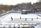凤凰山公园工作人员清除烟雨湖积雪(图)