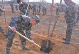 唐山:开平武装部基干民兵义务植树500余棵(图)