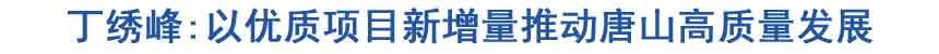 丁绣峰:以优质项目新增量推动唐山高质量发展