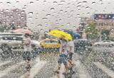 大雨来袭为城市带来清凉(图)