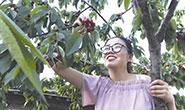 唐山:迁安发展果品产业助力乡村振兴