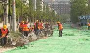 视频|唐山2019年背街小巷综合整治最新进展
