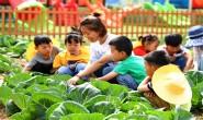 农耕教育进校园