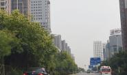 满眼绿!唐山中心区31条主次道路实现绿化提升