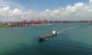 唐山港上半年完成货物吞吐量超3.17亿吨