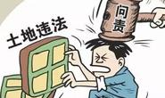 丰润区纪委监委通报6起非法占地典型案件