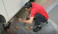 视频|路遇外地车卡上石墩求助,世警会冠军张云祥伸援手