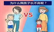专家提醒:矮小儿童长高需早发现早干预
