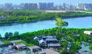 视频|画面太美!唐山市创建国家森林城市宣传片《入森林 见唐山》