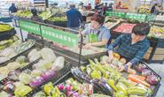 国庆节临近, 唐山市民选购时令蔬菜