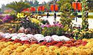 唐山市民尽享国庆假期休闲时光