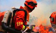 河北:消防救援人员及其子女享受教育优待