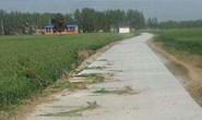 唐山将启动国省主干道路隔离设施建设 加大电子警察建设投入