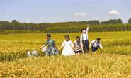 """曹妃甸""""农业+旅游""""融合发展 聚力打造滨海乡村休闲旅游新高地"""
