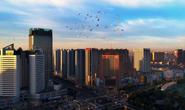 民进唐山市委召开2019年工作总结表彰暨2020年工作部署大会