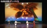 古筝连奏《青花瓷》《将军令》《大鱼》沙画表演《梅兰竹菊》
