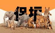 三部门下发紧急通知:严厉打击野生动物违法违规交易