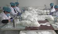 视频|记者探访唐山口罩生产企业