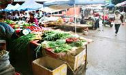 开平对重点市场实施整治提升和规范管理