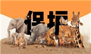 【专题】革除滥食野生动物陋习