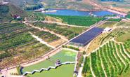滦州市鸡冠山生态农业产业园欢迎您