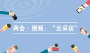 """【专题】两会・视频:""""云采访"""""""