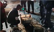 非法捕捞八爪鱼等300余斤,4人被刑拘