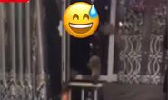 视频|唐山路北警方深夜抓获一名涉嫌贩毒逃犯