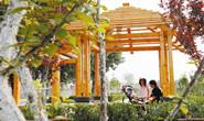 路南城管局:精心雕琢城市绿化景观,提升居民生活幸福指数
