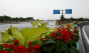 视频|一桥一景,桥景相融!唐山中心城区的桥梁变化你Get了吗