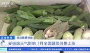 视频|极端天气影响供应 7月全国蔬菜价格上涨