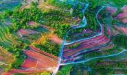 唐山:国家花乡果巷一二三产业融合标准化示范区揭牌