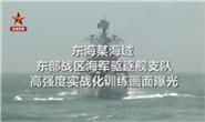 火力全开!东部战区海军驱逐舰实战训练,场面震撼