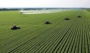 旱能浇、涝能排、渠相连、路相通!唐山这样建设高标准农田
