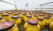 遵化水果罐头产业助2万多人就业