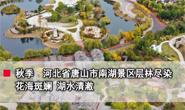 视频|唐山南湖:层林尽染 美不胜收