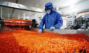 开平:严把原料准入关 保障食品生产安全