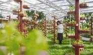 丰南倾力打造特色休闲农业品牌