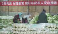 乐亭退役军人捐百万斤果菜驰援石家庄邢台