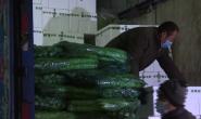 新华社聚焦 | 滦南:4万斤蔬菜驰援石家庄